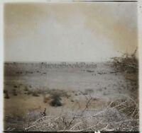 Zanguebe Niger Africa Nera Foto NB5 Placca Da Lente Stereo Vintage Ca 1910