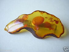 Honig Sonnenflinten und Kruste Natur Bernstein Brosche Genuine Amber 5,7 g