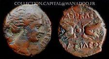 HEMILITRON 295/289 AC Bronze ou Cuivre