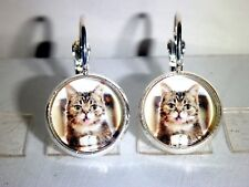 Ohrringe Katze Cat Tiere Damen Ohrschmuck Modeschmuck Glas Grau Cabochon
