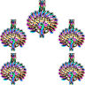 (5 Pack) Rainbow Color Peacock Beauty Tail Pendant Locket Beads Cage C668