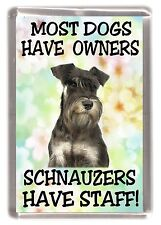 "Miniature Schnauzer Fridge Magnet ""Most Dogs Have Owners Schnauzers Have Staff"""