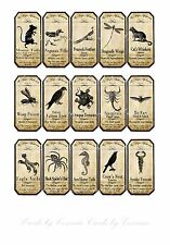 Halloween Magic apothecary animal label stickers set of 15 scrapbooking crafts