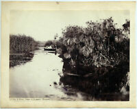 Siracusa Anapo Lotto di 2 Foto originali albumina Sommer & Behles 1860c L835
