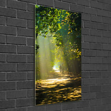 Wandbild Druck auf Plexiglas® Acryl Hochformat 50x100 Pfad im Wald