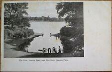 Jamaica Plain, Queens, NY 1905 Postcard: The Cove, Jamaica Pond, Pine Bank - NYC