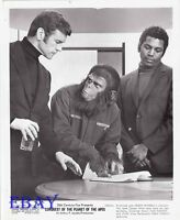 Conquest Of The Planet Of The Apes VINTAGE Photo