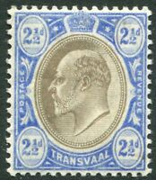 TRANSVAAL-1905 2½d Black & Blue (Ordinary Paper) Sg 263 LIGHTLY MOUNTED MINT