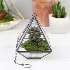 Sass & Belle Black Pyramid Hanging Terrarium