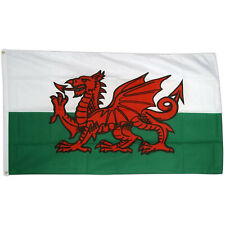 5ft Sports Football Rugby WALES Party Large WELSH National Fabric Flag