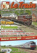 LE TRAIN N°354 - Flamsbana