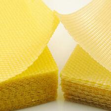 Honeycomb Foundation Beehive Feuille de cire d'abeille Outils d'apiculture