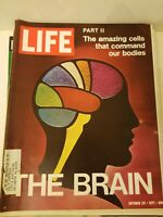 VTG Life Magazine: October 22 1971 - The Brain and Body's Amazing Cells Inside