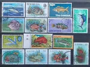 Fish Stamps Collection - 14 Used Stamps