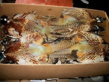 12 ringneck pheasant complete skins pelt feather craft fly tying native art dry