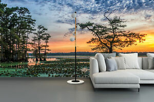 3D Sunset Cypress Self-adhesive Living Room Wallpaper Bedroom Wall Murals Decor