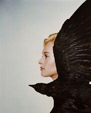 "TIPPI HEDREN AS MELANIE DANIELS FRO Poster Print 24x20"""