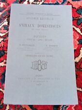 Montané & Bourdelle Anatomie régionale animaux domestiques EQUIDES 1937, cheval