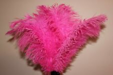 Large children,s toy ostrich feather dusters assorted colours 45cm 1st grade