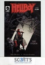 HELLBOY : THE STORM  #1  VF