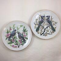 Vtg Price Imports Japan Set of 2 Decorative Plates Birds Bluebirds and Blue Jays