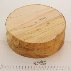 English Spalted Beech woodturning or wood carving bowl blank.  205 x 68mm. 6275A