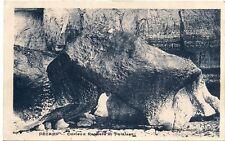 fécamp curieux rochers et falaises