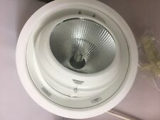 LIVAL MONDO 35W metal halide scoop fitting with control gear and Phillips lamp