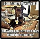 Funny Dog Humor I Don't Always Make A Mess Refrigerator Magnet