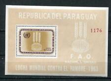 Paraguay 1963 Souvenir Sheet Sc 766a Fredom from hunger MNH 7399