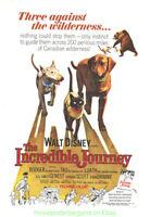 THE INCREDIBLE JOURNEY MOVIE POSTER Original 1963 Folded 27x41 Inch  WALT DISNEY