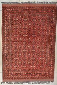"Turkomen Ersari Afghan Oriental Rug 7'0"" X 10'0"" #8017"