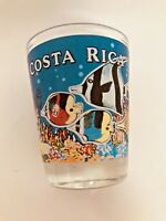 Gorgeous Costa Rica Pura Vida Shooter Shot Glass