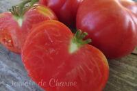 10 graines de tomate rare Sweetie beefsteak heirloom tomato seeds méth.bio