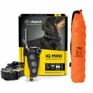 Dogtra IQ Mini - Remote Dog Training E-Collar with Teacher's Pet Training Bumper
