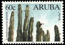 "ARUBA 171 - Native Cacti ""Lemaireocereus griseus"" (pb18877)"
