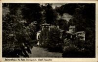 Schwarzburg Thüringen alte AK Postkarte ~1920/30 Partie am Hotel Trippstein