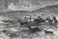 Llama Guanaco Hunting Patagonia Bolas, 1870s Antique Engraving Print & Article