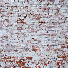 Shabby Brick Wall Backdrop 10x10 Youtube Video Prop Retro Photograph Background
