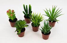 6er-Set Mini-Sukkulenten 10cm bis 14cm DP Kunstpflanzen künstliche Pflanzen