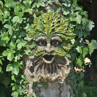 Treant Face Wall Plaque Bird Feeder House Greenman Garden Ornaments Wicca Pagan