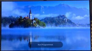 Lg OLED55B6 LC550AQD (GJ)(A9) OLED TV Screen with Slight Image Burn In (OLED 5)