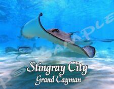 Grand Cayman - STINGRAY CITY - Travel Souvenir Flexible Fridge Magnet