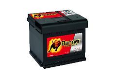 Banner P5003 Standard Battery