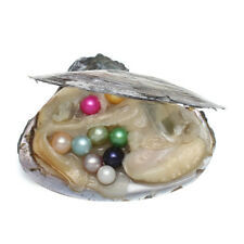 Wholesale Freshwater Oysters with Natural Pearls! 6mm-8mm -15 Colors! Great Gift