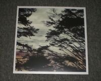 WL~Light Years~2016 Shoegaze / Indie Rock~Colored Vinyl!~FAST SHIPPING!!