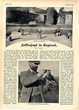 R. Cronheim Falken- Jagd in England Dem Falken wird die Kappe abgenommen...1906