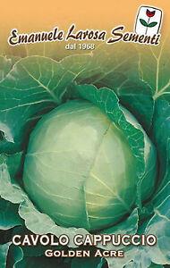 300 Semi/Seeds CAVOLO CAPPUCCIO Golden Acre
