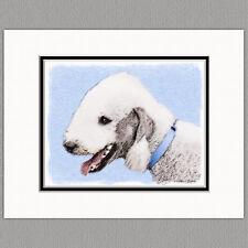 Bedlington Terrier Dog Original Art Print 8x10 Matted to 11x14