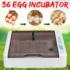 Chocadeira Digital 36 Ovos Automática Aves de Capoeira incubadora de ovos viragem Galinha Pato 220V